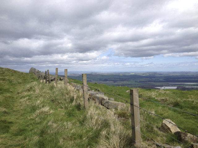 A stroll up Falkland Hill is the perfect remedy for any unwelcome Ceilidh after-effects!