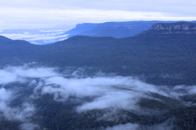 Living up to their name - a low mist hovers over the Blue Mountains