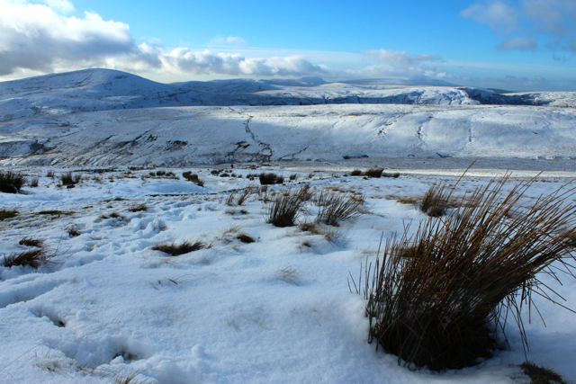 Even on the lower slopes, snow covers the path