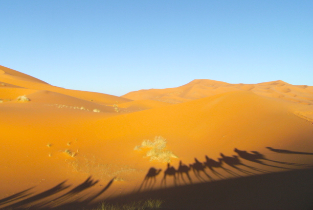 Overnighting in the Sahara Desert, Morocco; Under the stars