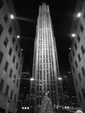 The Rockefeller Centre dwarfing a large christmas tree