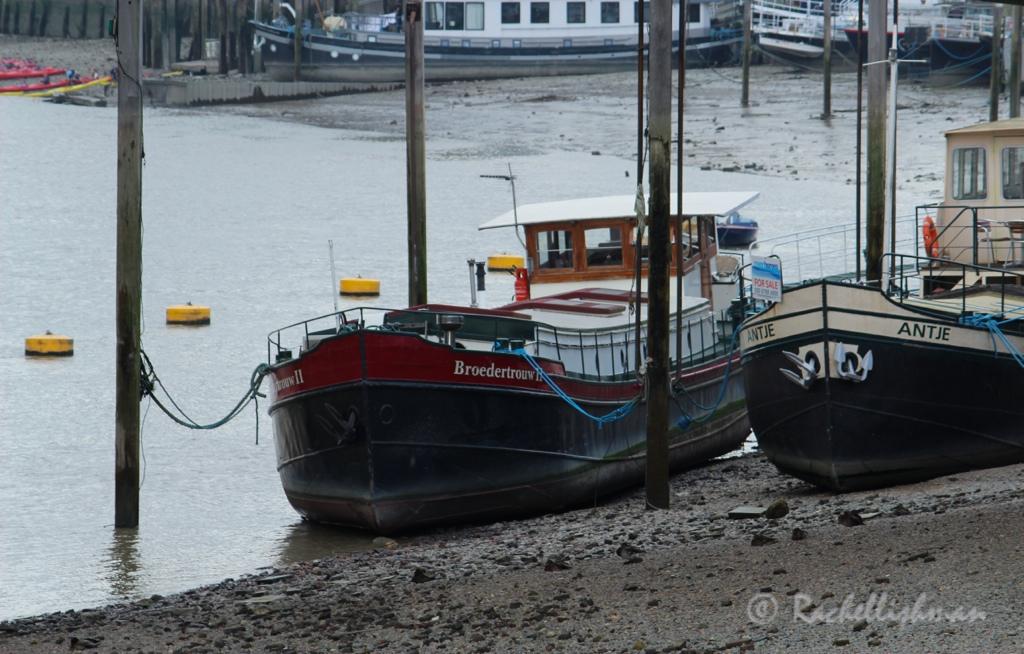 Riverboats sit quietly under footbridges near Chelsea