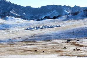 A neighbouring camp in Terelj National Park