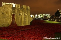 The Tower of London in November 2014 - surrounded by 800,000 ceramic poppies