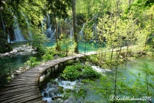 A series of well kept boardwalks take you over and through the waterfalls