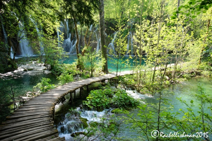 Visiting Plitvice upper lakes after 4pm makes for a blissfully quiet boardwalk - all the better for wildlife spotting!