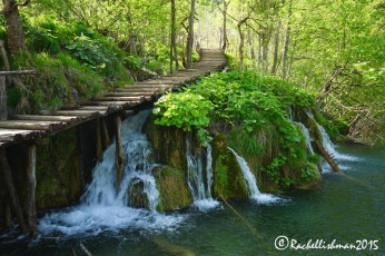 Despite the loud noise of running water and nesting wildlife, it's easy to find solace in Plitvice...