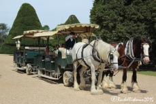 Visitors can take a ride through the gardens in the old fashioned way