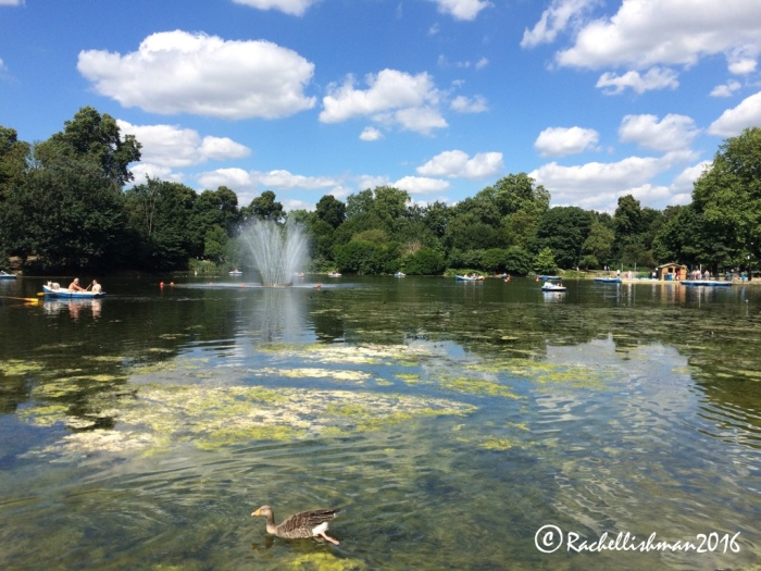 Birds rule the roost at Victoria Park, northeast London.