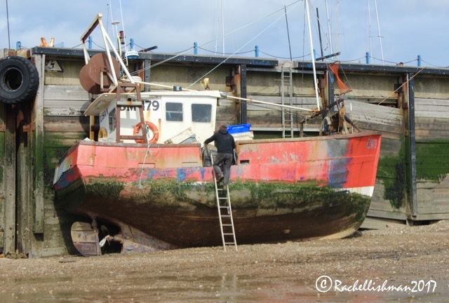Whitstable is still a fishing town; the industry that built its popularity during the 18th century..