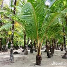 Exploring Coiba National Park, Panama