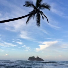 A tropical Christmas Day, Puerto Viejo, Costa Rica...