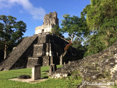 Visitors can climb the Queen's temple to get a view over the heart of Tikal