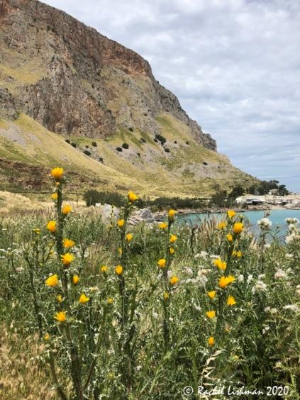 Cliffs and coastline define this lovely day walk