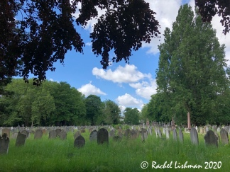 Brockley Cemetery - one of the largest open areas